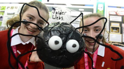 Rochelle Scannell and Melissa Duggan from Sacred Heart Secondary School, Cork, with their project on Orb Spider Webs  at the 2013 exhibition.  Photograph: Alan Betson/The Irish Times