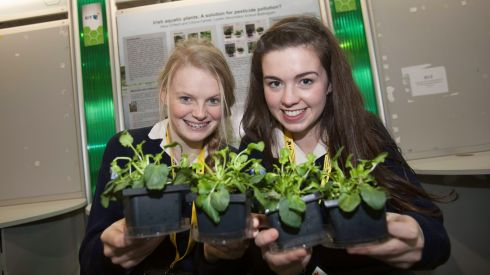 Cliona Farrell (16)  and Alice O'Neill (17), Loretto Balbriggan, with their exhibit, Irish Aqualtic Plants - A Solution for Pesticide Pollution?, at the BT Young Scientist exhibition. Photograph: Gareth Chaney/Collins