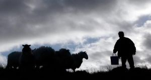 Winter bleakness: Cynan Jones looks to the landscape. Photograph: Cathal McNaughton/Reuters