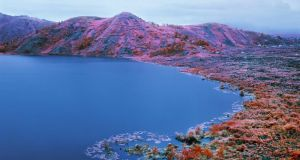 Immersion project: from The Enclave, by Richard Mosse