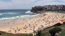 About a mile south of the more famous Bondi Beach, along a beautiful waterfront walkway, is Bronte Beach. Photographs: Jack Atley, New York Times
