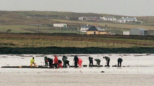 LIFE: Worm-pickers at work at Blind Harbour near Belmullet, Co Mayo   in 1999