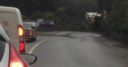 A tree is seen blocking Fota Road by the entrace to wildlife park. Photograph: ESB Networks via Twitter
