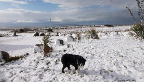 Snow on Bloody Foreland in Gweedore, Co Donegal. Photograph: Columbia Hillen
