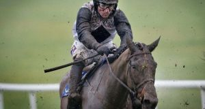 Dunguib: can €40,000 Ladbrokes Boyne Hurdle at Navan on Sunday.