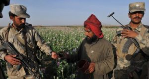 A file photograph of Afghanistan National Police officials seizing an opium poppy scoring tool from a farmer in a poppy field at Maranjan Village in Helmand province. Photograph:  Bay Osmoyo/AFP/Getty Images.