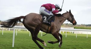 Last Instalment, ridden by Brian O'Connell, comes home to win the 2014 Hennessy Gold Cup at Leopardstown. Photograph: Inpho
