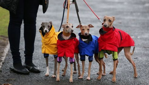 A stick-thin bunch. Coats not optional. Photograph: Matt Cardy/Getty Images