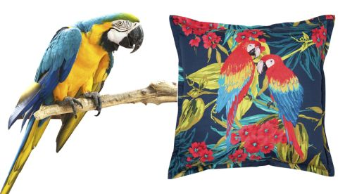 Blue Macaw, €12-1400, Copsewood Avaries, Kilmacanougue Rio Parrot Cushion, €35, Marks and Spencer