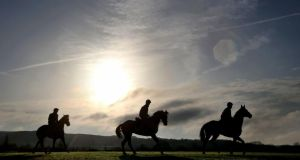 Spring is in the air as some runners have an early run-out at Cheltenham yesterday morning in preparation for the start of today's four-day festival. Photograph: Dan Sheridan/Inpho