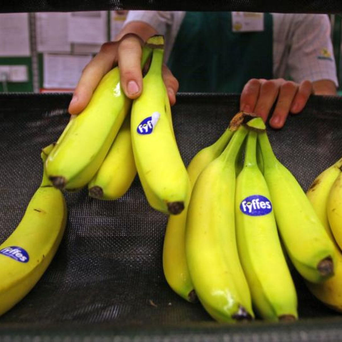 Fyffes merges with rival Chiquita to create world's biggest