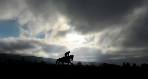 Day one begins, as ever, with horses on the gallops. National hunt's main event expects to  see over 230,000 people come through the Cheltenham gates. Photograph: Tim Ireland/PA