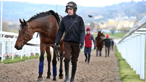 Hurricane Fly and Ruby Walsh at Prestbury Park this morning. Photograph: Dan Sheridan/Inpho
