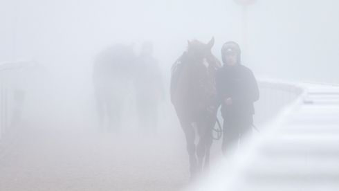 Out of the fog, Ruby Walsh walks Annie Power back from the gallops. Photograph: David Davies/PA