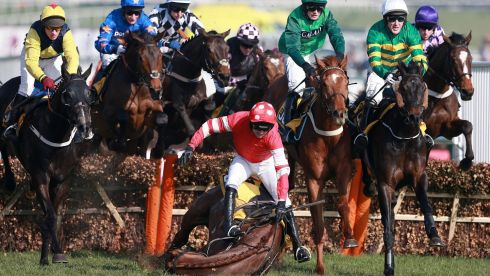 Ruby Walsh, riding Abbyssial, falls at the second fence in the first race, Photograph:  David Davies