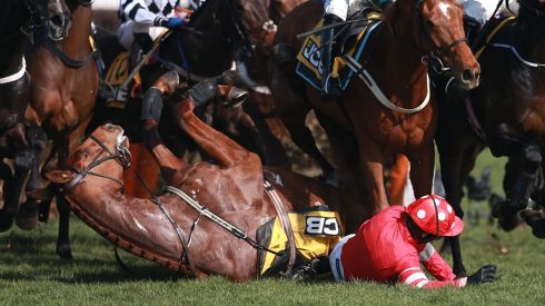 Ruby Walsh is caught under his mount after a second-fence fall. Photograph: David Davies/PA