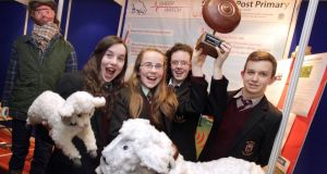 Emma McCabe, Edel Campbell, Zoe Maguire and Ricardas Cepanauskas from St Oliver's in Oldcastle, Co Meath show their Sheep Watch product. Photographs: Mark Stedman/Photocall Ireland