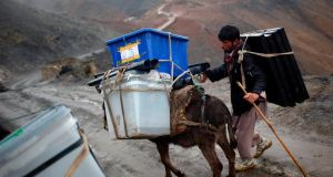 An Afghan man tries to control his donkey loaded with ballot boxes. Photograph: Ahmad Masood/Reuters