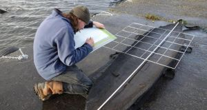A researcher painstakingly documents one of the Lough Corrib finds.
