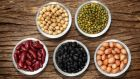 There is no definite evidence to support one particular diet for PCOS, but it's advisable to include lean protein at each meal to help lower the GI. Beans, peas, lentils are also very good choices
