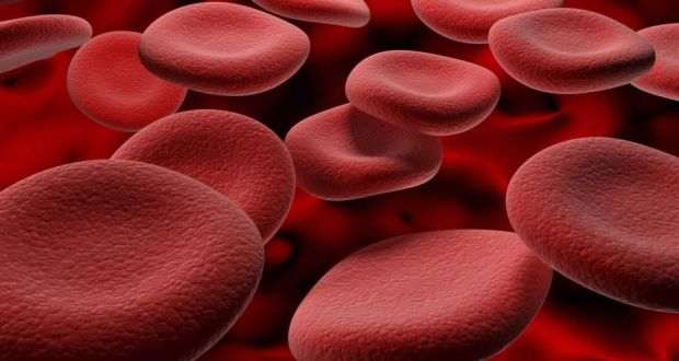 Scientists in the UK and Ireland have grown a large number of red blood cells in the laboratory, using stem cells, and are preparing to test them in human trials.