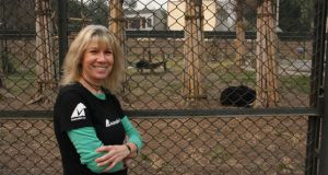 Jill Robinson, chief executive and founder of Animals Asia, at her organisation's moon bear sanctuary near Chengdu, in Sichuan province, China. To date Animals Asia has rescued 285 bears in China. Photograph: Clifford Coonan