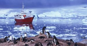 World's end: You can't just jet off to the Antarctic as a tourist, but you could join an expedition cruise.  Photograph: Guy Wenborne