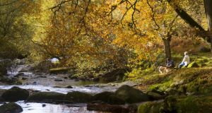 A couple and their dog enjoying autumn in Cloghleagh. Photograph: Michael Delahunty