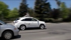 A fleet of Google's robot cars ferried reporters around Mountain View, California yesterday in 30-minute ride-alongs that showcased their ability to automatically and safely navigate around city streets packed with cyclists and cars. Video: Reuters