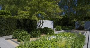 Luciano Giubbilei's Best in Show at the  RHS Chelsea Flower Show 2014. Photograph: Richard Johnston