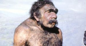 Neanderthal man who lived from about 120,000 years ago to 30,000 years ago. Photograph: Tom McHugh/Field Museum, Chicago/Science photo Library