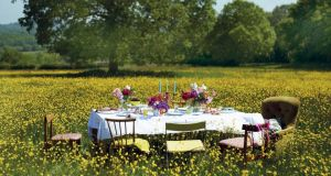 A party in a field full of buttercups where everyone brought a chair