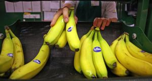 Banana importer Fyffes rose 2.04 per cent to close at €1.102 after negotiating the first regulatory hurdle facing its proposed merger with rival Chiquita