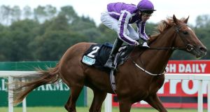 Australia ridden by Joseph O'Brien is likely to start favourite for the Derby. Photograph: Inpho