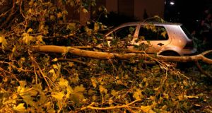 Fallen trees in Dortmund last night. Photograph: Ina Fassbender/Reuters
