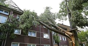 A  branch fallen on a  roof in Recklinghausen, Germany, this morning,  after the area was hit by a storm. Photograph: Marcel Kusch/EPA
