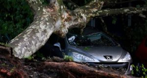 A car is written off by a fallen tree in a Gelsenkirchen dealership in Germany early today. Photograph: Ina Fassbender/Reuters