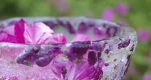 Bring the garden into the kitchen by making an ice-bowl in which to serve chilled food. Photograph: Richard Johnston