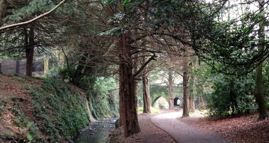 Top 10 Irish parks