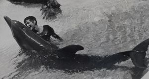 The girl who spoke to dolphins: Margaret Howe at the house in the Virgin Islands in 1964. Photograph: John Lilly Estate/BBC