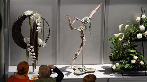 Winner of the best in show display at left by Vinita Khemka, from India. Photograph: Cyril Byrne/The Irish Times
