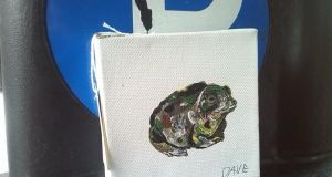 Public gallery: an EndangeredDave natterjack toad. Photograph: David Byrne/Facebook