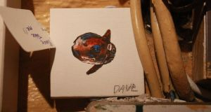 Public gallery: an EndangeredDave sunfish. Photograph: David Byrne/Facebook