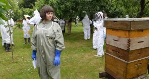 Ann Marie Hourihane keeps an eye on the bees during a Louth Beekeepers Association demonstration in Castleknock; Photograph: Cyril Byrne