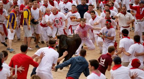 Runners dodge a fighting calf inside Pamplona Bullring during the second day of the San Fermin Running Of The Bulls festival on July 7th, 2014 in Pamplona, Spain. Photograph: Christopher Furlong/Getty Images