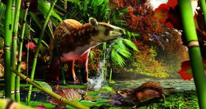 On right, the tiny hedgehog previously unknown to science that lived in a British Columbia rainforest some 50 million years ago; left, an ancient relative of the modern tapir known as Heptodon. Image: Julius Csotonyi
