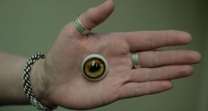 Uncanny: a  recreated goat  eye. Photograph: Charles McQuillan/Pacemaker