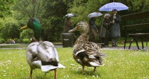 File image: Met Éireann has issued a yellow weather warning for heavy rainfall in Leinster, Cavan and Monaghan today. Photograph: Brenda Fitzsimons/The Irish Times