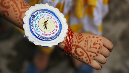 An Indian girl shows her rakhi with a mosquito depicted alongside it during the Raksha Bandhan Festival celebrations in Calcutta, eastern India. The event here was also an awareness campaign over Japanese Encephalitis, which led to the deaths of more than 150 people in Bengal in recent months. Photograph: Piyal Adhikary/EPA