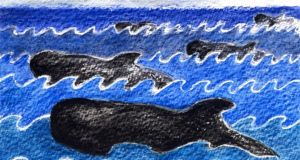 Pilot whales: a pod of 13 beached in Co Donegal last month. Illustration: Michael Viney